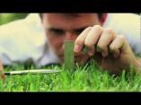 Perfectionist Grass Cutter